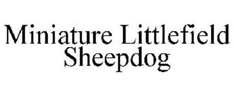 MINIATURE LITTLEFIELD SHEEPDOG