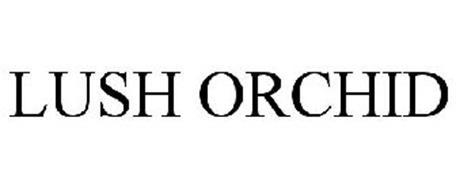 LUSH ORCHID