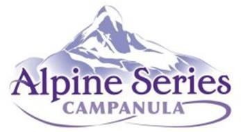 ALPINE SERIES CAMPANULA