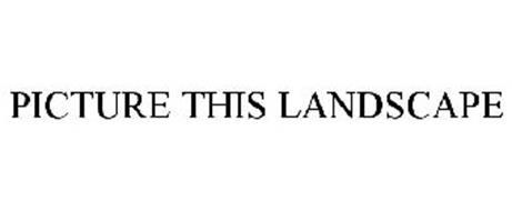 PICTURE THIS LANDSCAPE