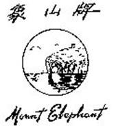 MOUNT ELEPHANT