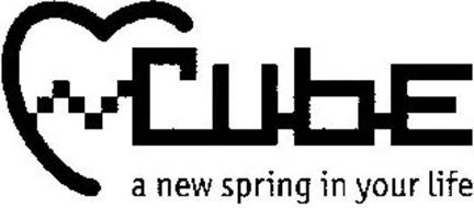 CUBE A NEW SPRING IN YOUR LIFE