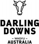 DARLING DOWNS - WAGY- AUSTRALIA