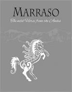 MARRASO THE WILD HORSE FROM THE ANDES