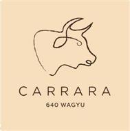 CARRARA 640 WAGYU