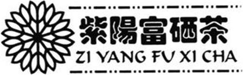 ZI YANG FU XI CHA