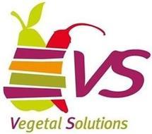 VS VEGETAL SOLUTIONS