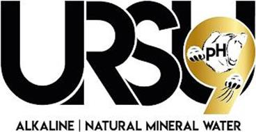 URSU9 PH ALKALINE | NATURAL MINERAL WATER