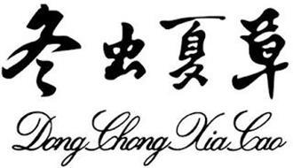 DONG CHONG XIA CAO