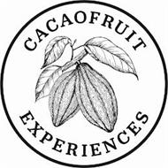 CACAOFRUIT EXPERIENCES