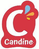 C CANDINE