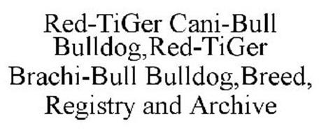 RED-TIGER CANI-BULL BULLDOG,RED-TIGER BRACHI-BULL BULLDOG,BREED, REGISTRY AND ARCHIVE