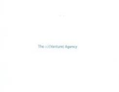 THE AD(VENTURE) AGENCY