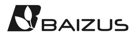B BAIZUS