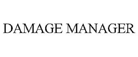 DAMAGE MANAGER