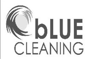 BLUE CLEANING