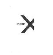 DSM X