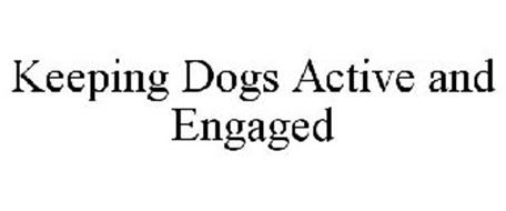 KEEPING DOGS ACTIVE AND ENGAGED