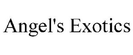 ANGEL'S EXOTICS