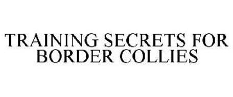 TRAINING SECRETS FOR BORDER COLLIES