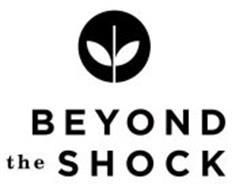 BEYOND THE SHOCK