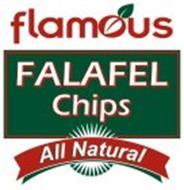 FLAMOUS FALAFEL CHIPS ALL NATURAL