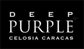 DEEP PURPLE CELOSIA CARACAS