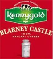 MILK FROM GRASS-FED COWS KERRYGOLD BLARNEY CASTLE 100% NATURAL CHEESE