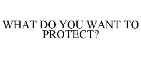 WHAT DO YOU WANT TO PROTECT?