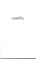 LOWDO2