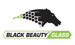 BLACK BEAUTY GLASS