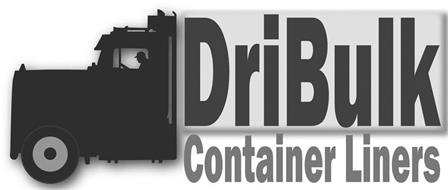 DRIBULK CONTAINER LINERS