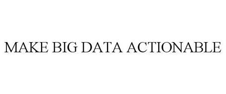 MAKE BIG DATA ACTIONABLE