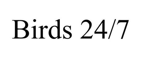 BIRDS 24/7