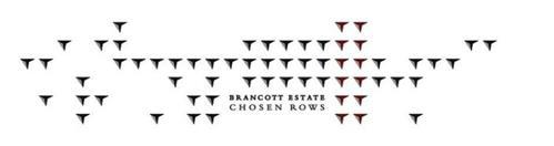 BRANCOTT ESTATE CHOSEN ROWS