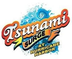TSUNAMI SURGE AT HURRICANE HARBOR