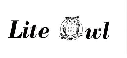 LITE OWL