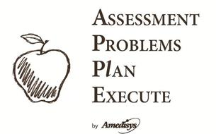 ASSESSMENT PROBLEMS PLAN EXECUTE BY AMEDISYS