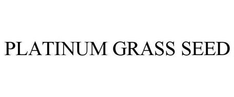 PLATINUM GRASS SEED