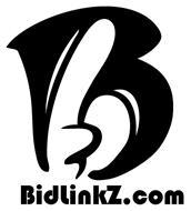 B BIDLINKZ.COM