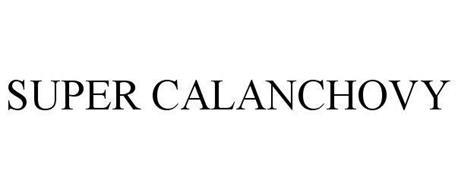SUPER CALANCHOVY