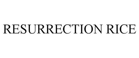 RESURRECTION RICE