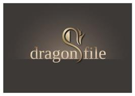 DRAGON FILE
