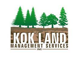 KOK LAND MANAGEMENT SERVICES INC