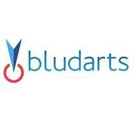 BLUDARTS