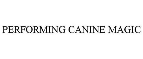 PERFORMING CANINE MAGIC