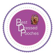 BEST DRESSED POOCHES