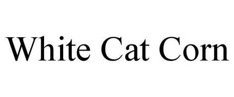 WHITE CAT CORN