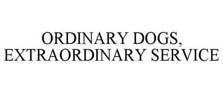 ORDINARY DOGS, EXTRAORDINARY SERVICE
