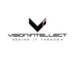 V I VISION-INTELLECT SEEING IT THROUGH